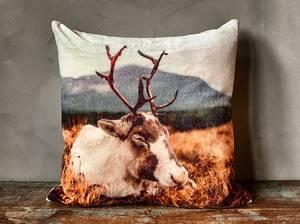 Bilde av Putetrekk velur 50x50cm sovende reinsdyr